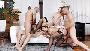 Full erotic fantasy in a homemade predetermine orgy